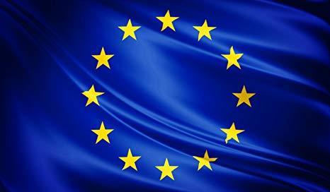 GLI ELETTI ITALIANI IN EUROPA