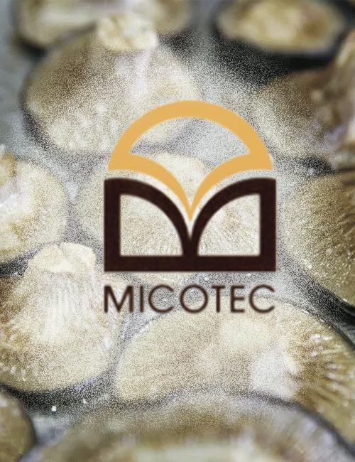 MICOTEC SRL
